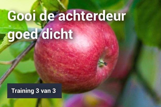 Laaghangend fruit visual 3